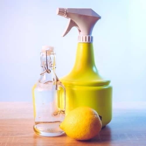 Citrus Infused Vinegar Cleaning Spray