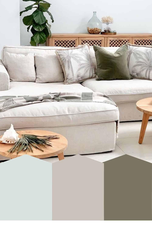 Neutral Tropical Living Room Color Pallet