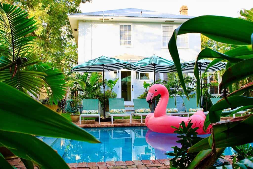 flamingo float in citrus cottage pool