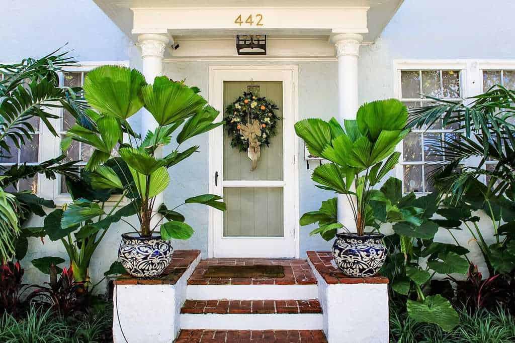 tropical entryway porch